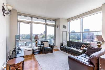 Astoria Condo/Townhouse For Sale: 11-24 31st Ave #6E
