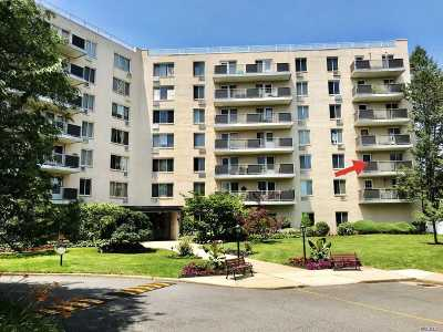 Westbury Condo/Townhouse For Sale: 135 Post Ave #2k