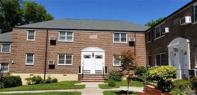 Little Neck Condo/Townhouse For Sale: 251-24 58 Ave #1-34