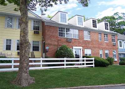 Islandia Condo/Townhouse For Sale: 307 Towne House Vlg