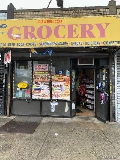 Queens County Commercial For Sale: 231-05 Linden Blvd
