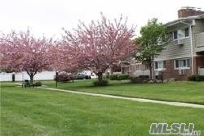 Smithtown Co-op For Sale: 365 Route 111 #B-1