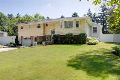 Greenlawn Single Family Home For Sale: 23 Butterfield Dr