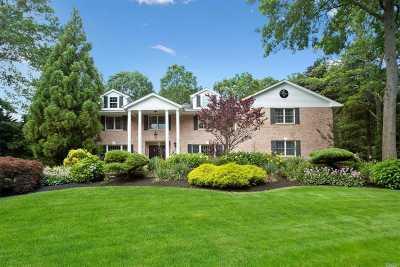 Dix Hills Single Family Home For Sale: 11 Daniel Ln