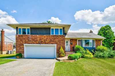 Hicksville Single Family Home For Sale: 7 Aster Dr