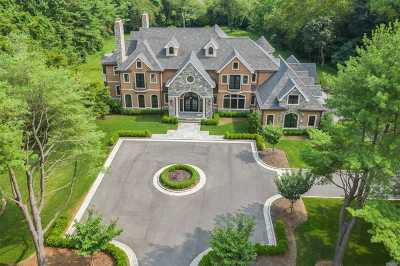 Syosset Single Family Home For Sale: 4 Waylor Ln