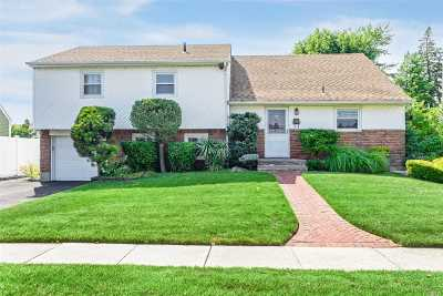 Massapequa Single Family Home For Sale: 68 Merritt Ave