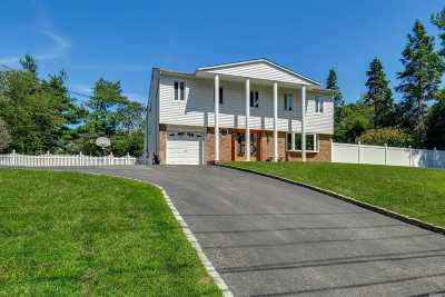 Commack Single Family Home For Sale: 236 Town Line Rd