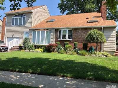 Farmingdale Single Family Home For Sale: 27 2nd Ave