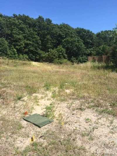 Patchogue Residential Lots & Land For Sale: Sunrise Hwy Ssr