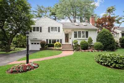 Garden City Single Family Home For Sale: 78 Pell Ter
