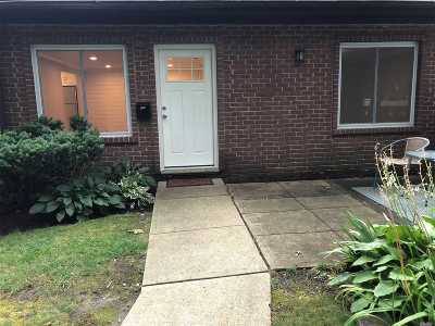 Medford Condo/Townhouse For Sale: 119 Birchwood Rd