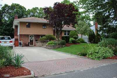 Commack Single Family Home For Sale: 19 Sparton Ln