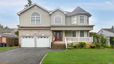 East Meadow Single Family Home For Sale: 389 Wellington Rd