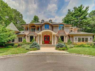 Old Westbury Single Family Home For Sale: 15 Meadow Rd