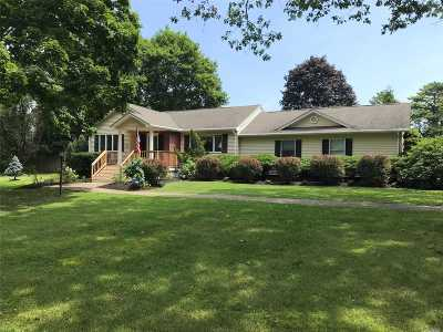 Manorville Single Family Home For Sale: 3 Wright Rd