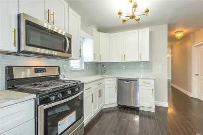 Queens Village Single Family Home For Sale: 212-24 Murdock Ave