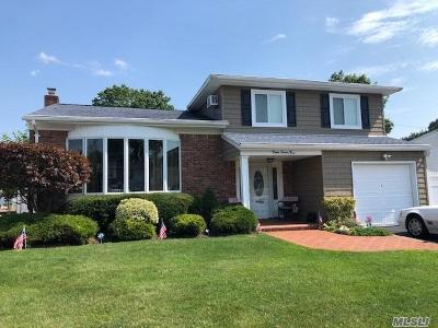 Seaford Single Family Home For Sale: 1279 Lois Ln