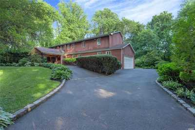 Dix Hills Single Family Home For Sale: 549 Caledonia Rd