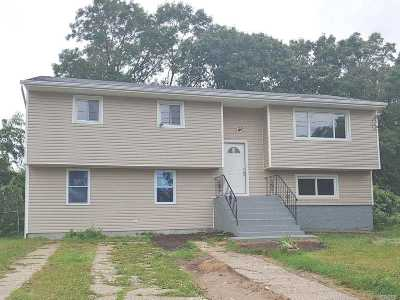 Suffolk County Single Family Home For Sale: 808 Ferndale Blvd