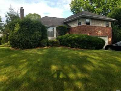 Westbury Single Family Home For Sale: 621 Nelson Pl