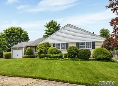 Massapequa Single Family Home For Sale: 45 Roy Ave