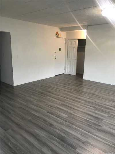 Flushing Condo/Townhouse For Sale: 147-26 Roosevelt Ave #1D