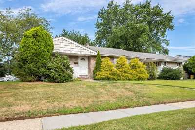 Bethpage Single Family Home For Sale: 32 Phyllis Dr
