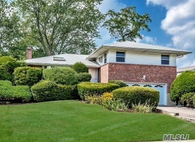 Plainview Single Family Home For Sale: 3 Ives Ln