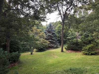 Farmingville Residential Lots & Land For Sale: 22 Hickory Ave