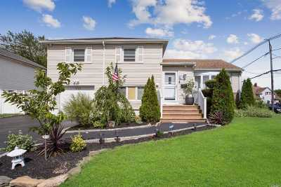 Freeport Single Family Home For Sale: 419 Miller Ave