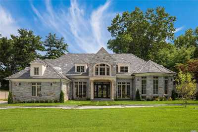 Searingtown Single Family Home For Sale: 97 Crescent Dr