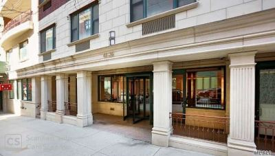 Long Island City Condo/Townhouse For Sale: 41-26 27 St #2E