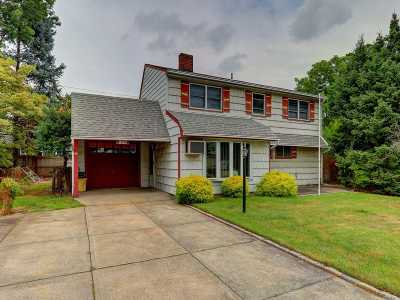 Hicksville Single Family Home For Sale: 193 Spindle Rd