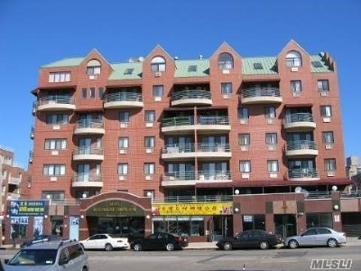 Flushing Condo/Townhouse For Sale: 41-05 College Point Blvd
