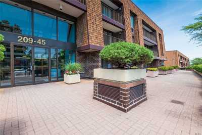 Bayside Condo/Townhouse For Sale: 209-45 26 Ave #1G