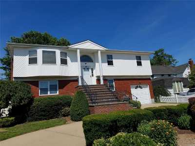 Bethpage Single Family Home For Sale: 355 Stewart Ave