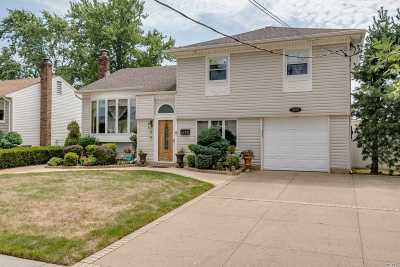 Bellmore Single Family Home For Sale: 2682 Walker St