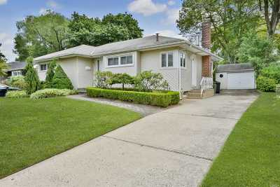 East Meadow Single Family Home For Sale: 443 Cedar Ln