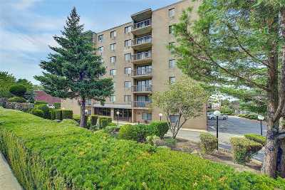 Middle Village Condo/Townhouse For Sale: 71-49 Metropolitan Ave #2D