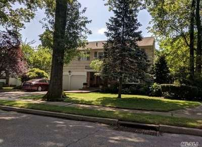 Westbury Single Family Home For Sale: 30 Marietta Dr