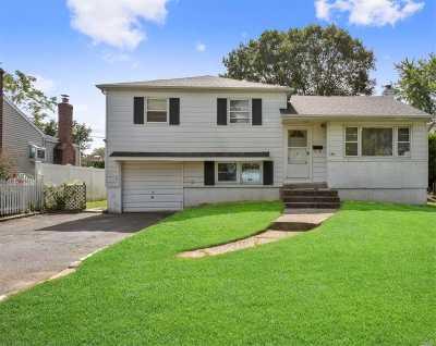 Farmingdale Single Family Home For Sale: 199 Thomas Powell Blvd
