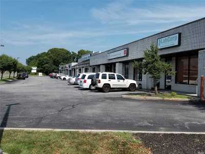Sayville Commercial For Sale: 4848 Sunrise Hwy