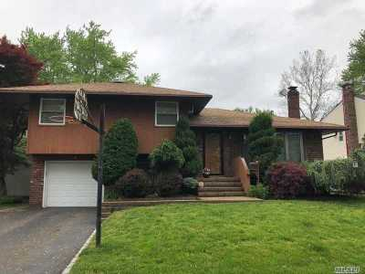 Syosset Single Family Home For Sale: 6 Carolyn Ct