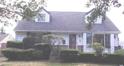 New Hyde Park Single Family Home For Sale: 101 Schumacher Dr
