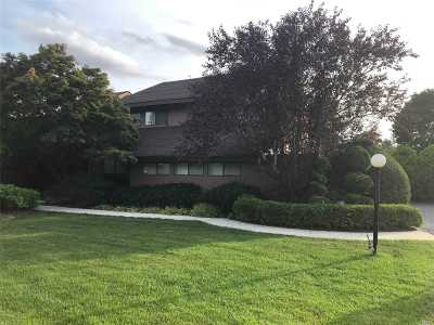 E. Setauket Single Family Home For Sale: 10 Gallo Ct