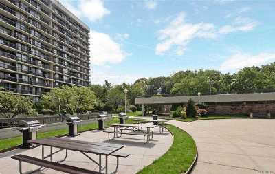 Flushing Condo/Townhouse For Sale: 152-18 Union Tpke #PHF