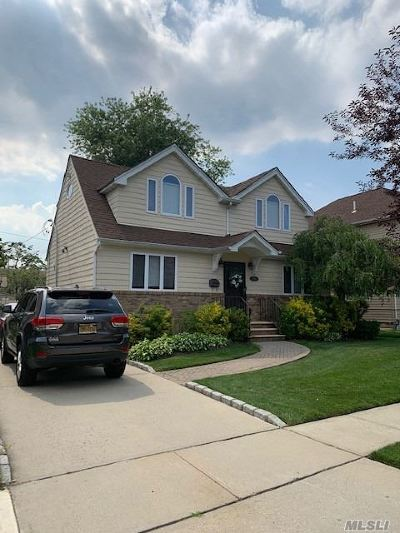 Williston Park Single Family Home For Sale: 258 Collins Ave