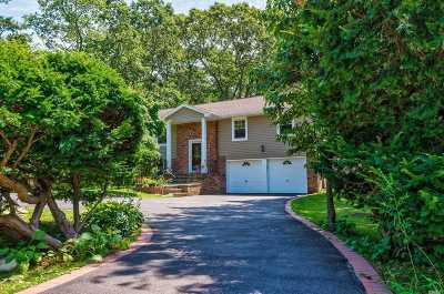 Syosset Single Family Home For Sale: 354 Cold Spring Rd