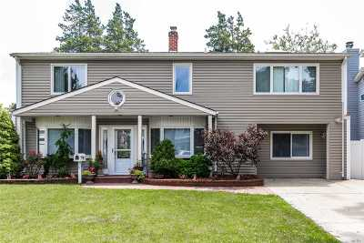 Levittown Single Family Home For Sale: 11 Daisy Ln